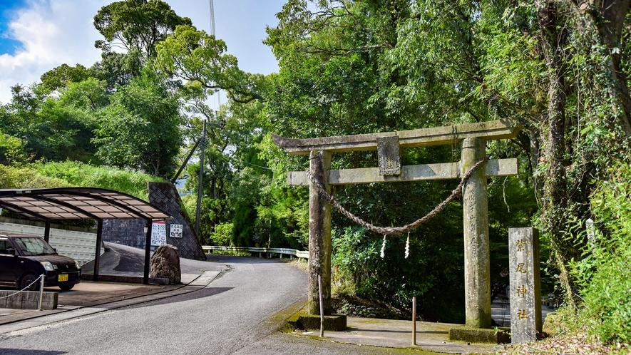 *【紫尾神社】拝殿下より湧き出る「神の湯」。