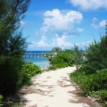 海上遊歩道へ続く道