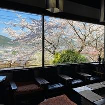 ・ロビー/春の景観