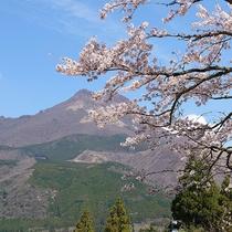 ・施設/春の景観