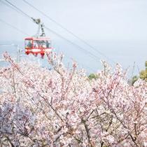 須磨浦ロープウェイからの絶景は一見の価値ありです!