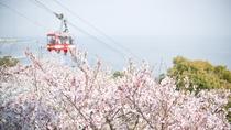 *須磨浦ロープウェイからの絶景は一見の価値ありです!