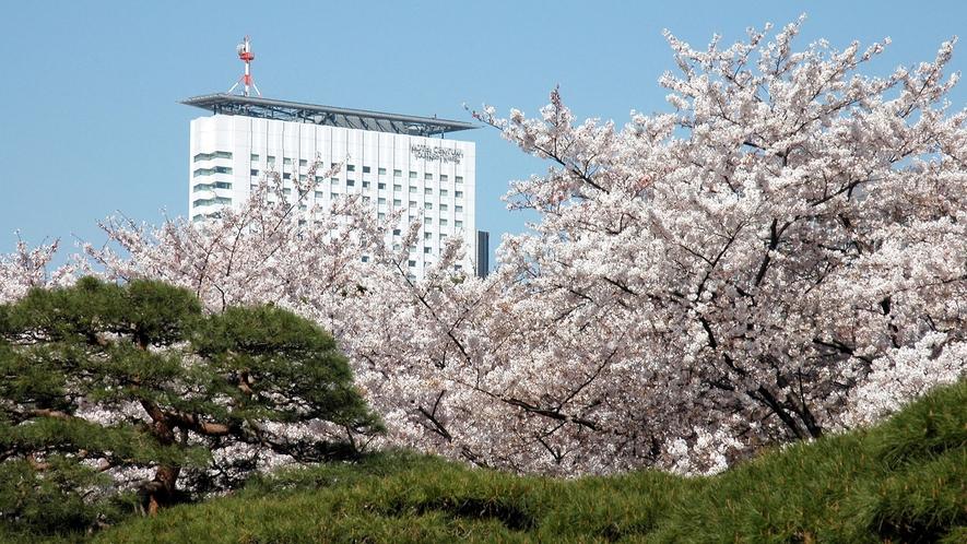 新宿御苑より望むホテル外観(春イメージ)