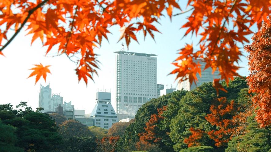 新宿御苑より望むホテル外観(秋イメージ)