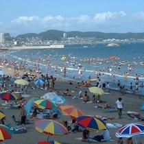 三浦海岸 海水浴場