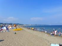 砂浜も海も美しいと評判の三浦海岸