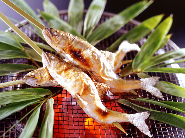 長良川天然鮎塩焼きイメージ