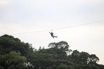 【猿ヶ城渓谷】ジップライン11