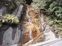 猿ヶ城渓谷 平蔵の滝