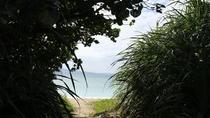 【屋部中学校前のビーチ入り口】 徒歩約5分(P無し)