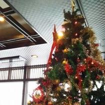 12月はロビーにクリスマスツリーを設置、記念に1枚お撮りしますよ♪