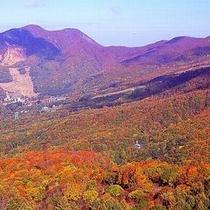 【紅葉の蔵王高原】ロープウェーでは山全面の紅葉を見ながら空中散歩を楽しめる