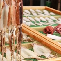 【鼠ヶ関魚市場】イカの一夜干しが名産。日本海から水揚げされた新鮮な魚をお土産に