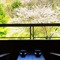【2〜4階客室〜旅倶楽部〜和室山側】4月中旬の様子