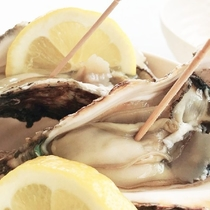 【夏季限定】庄内物産館 岩牡蠣チケット付きプラン
