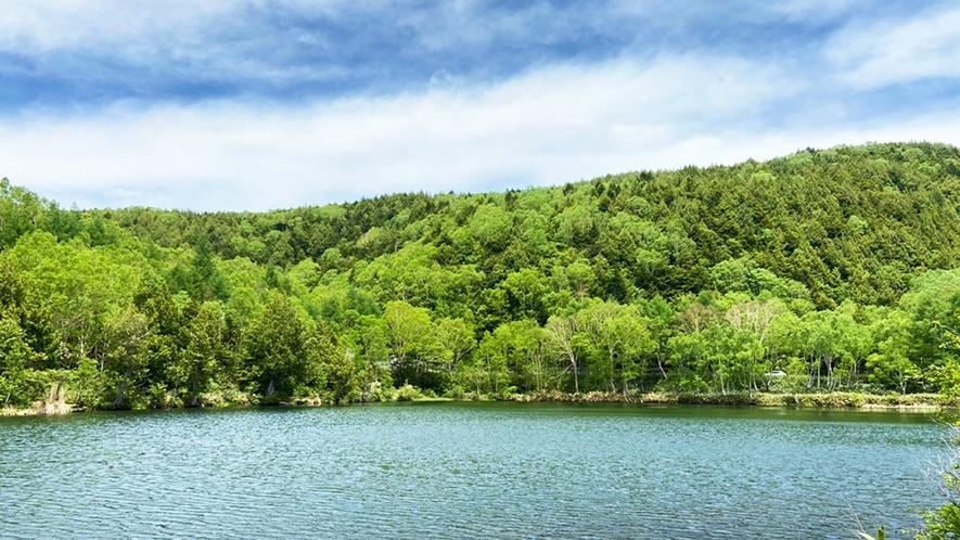 *【木戸池】湖面に映える白樺やダケカンバが美しい木戸池。紅葉の時期はとくにオススメです!車で約10分