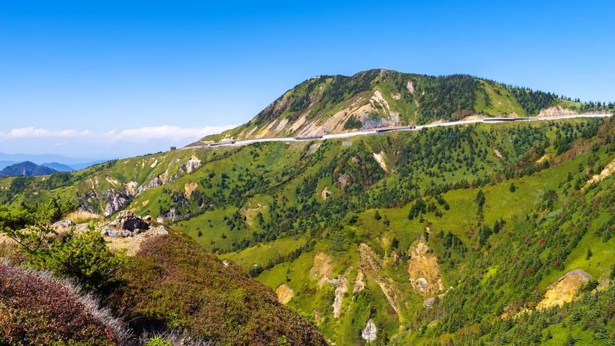 **【周辺】志賀高原の風景/志賀高原のさわやかなグリーンシーズンを満喫!