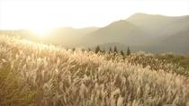 黄金色に輝く山々