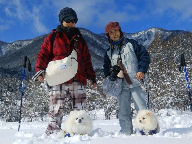 白馬でスノーシュー体験