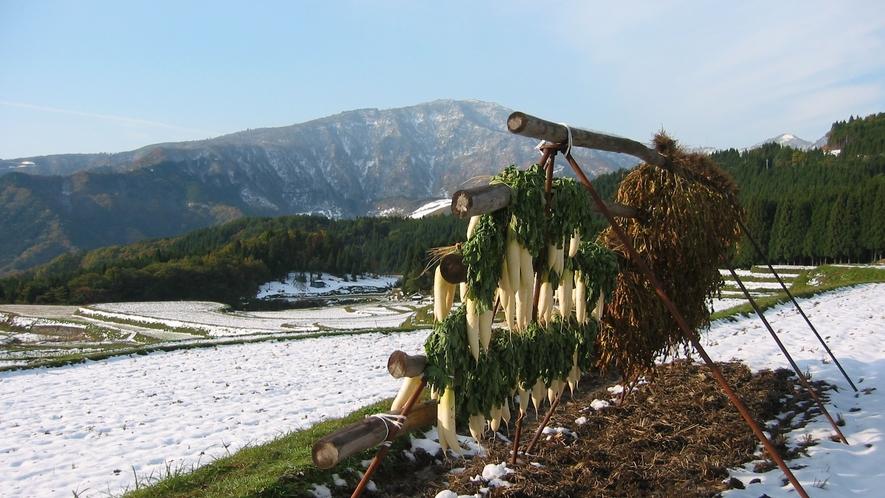 *雪のある景色(氷ノ山)