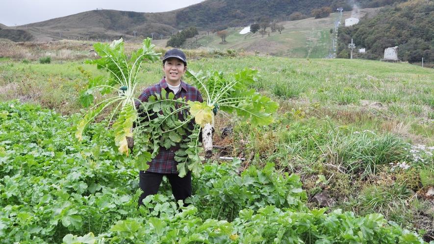 *地元で採れたお野菜