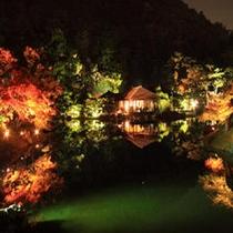 【栗林公園秋のライトアップ】