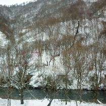 *【風景】夏から冬へ…すっかり様変わりする風景です。