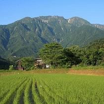 グリーンシーズン霊峰八海山
