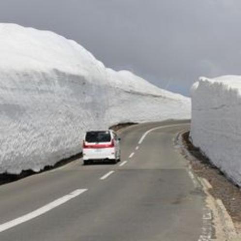 (春)蔵王エコーライン「雪の回廊」