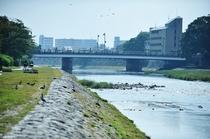 【周辺情報】鴨川