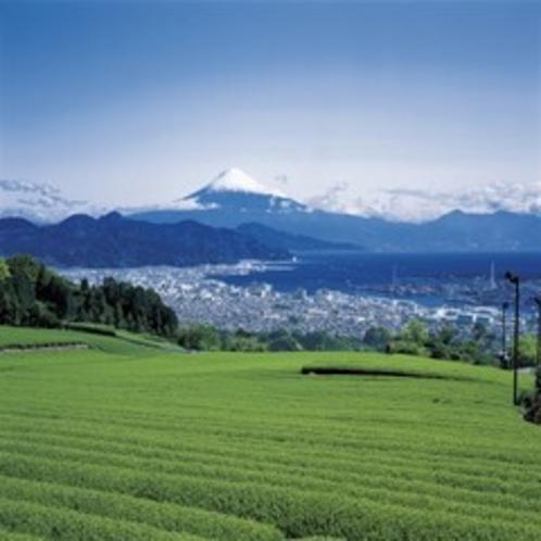 △富士山△