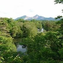 中瀬沼・初夏