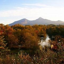 秋の中瀬沼