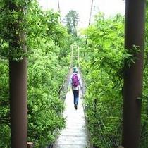 桧原湖畔探勝路・吊り橋