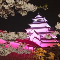 鶴ヶ城夜桜のライトアップ(2)