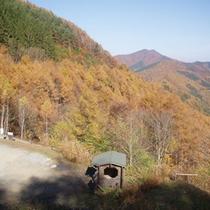 *【分杭峠】当館より車で約13分。紅葉の見頃は例年10月中旬~11月上旬頃