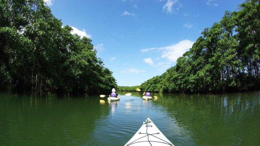 *カヤックで川を進み、トレッキングで滝つぼへと向かう「ピナイサーラの滝」ツアー。
