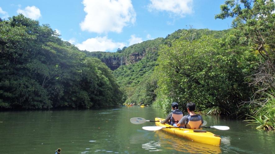 【ピナイサーラの滝ツアー】マングローブカヌー 画像提供:ニライナホリデイズ