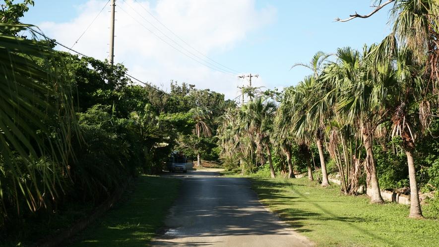 【施設】木々に囲まれた、自然豊かな環境の中でのびのびとご滞在を。
