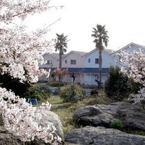 ■ログハウス(春)■