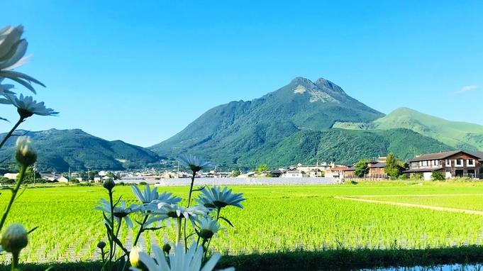 ・【朝食付】<50歳以上のご夫婦◆特典付き>自家製ハーブティサービス☆由布岳を眺めながらゆっくり♪