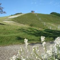 秋の「アップ神鍋 上の平 北の壁コース」