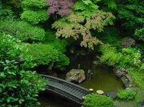 落ち着いた日本庭園