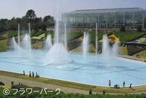 フラワーパーク噴水