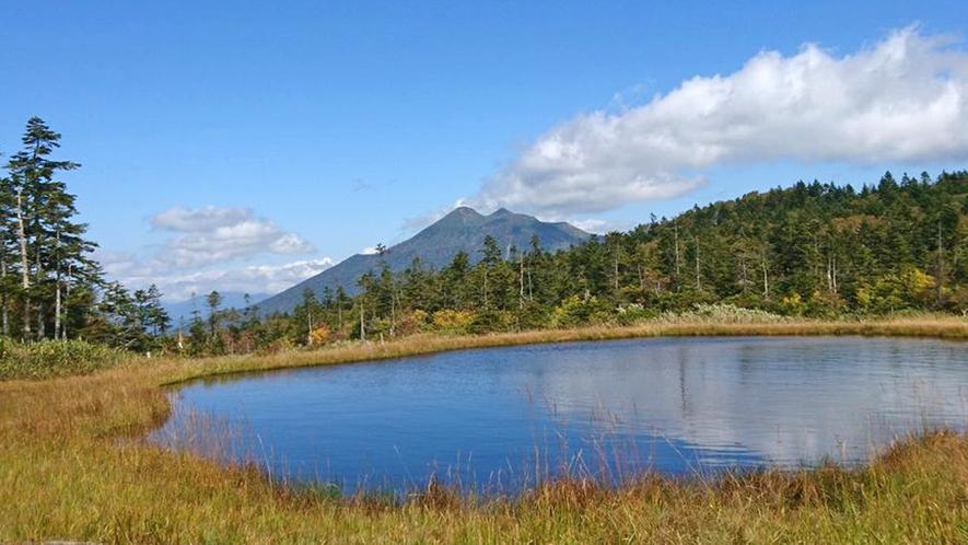 *尾瀬の紅葉/湿原一帯に広がる黄金の草紅葉は山の紅葉とは一味違います。