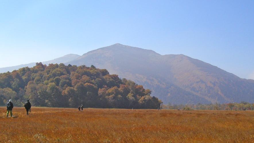 *尾瀬(紅葉)/行った人にしか分からない、四方を自然に囲まれた見事な「草紅葉」の景色