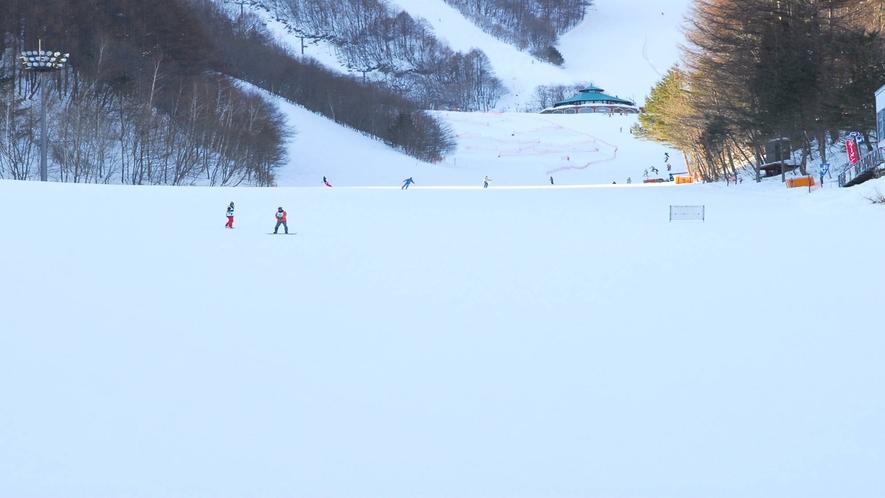 *ホワイトワールド尾瀬岩鞍スキー場/初級者から上級者そしてキッズまでレベルを問わず楽しめる!