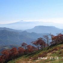 谷川岳天神平(1)