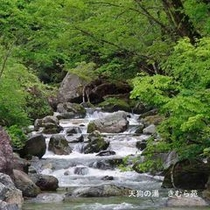 照葉峡(1)