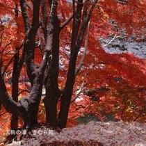 諏訪峡(7)